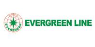 """Eevergreen"""""""
